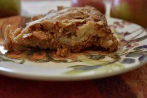 A crispy slice of apple heaven